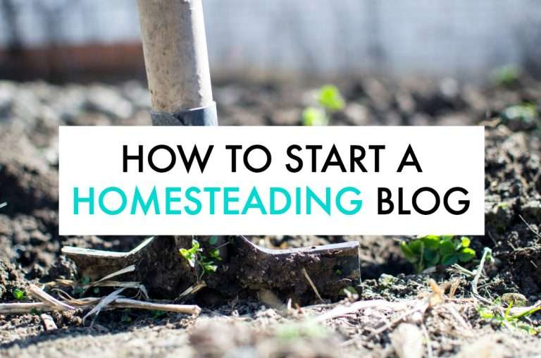 How to Start a Homesteading Blog