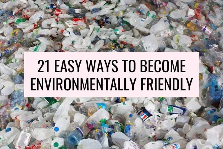 ways to be environmentally friendly