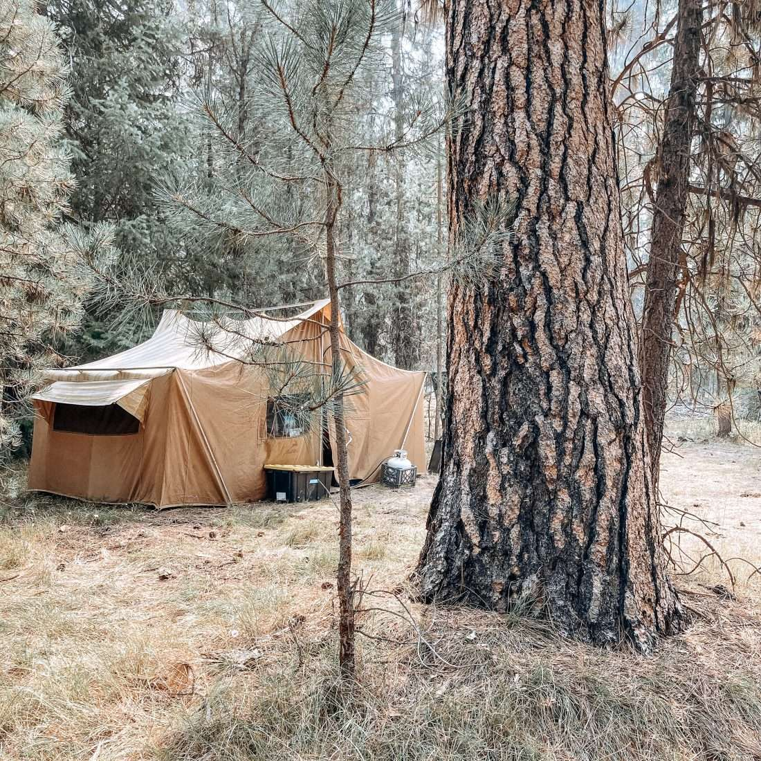 classic camping with a canvas tent