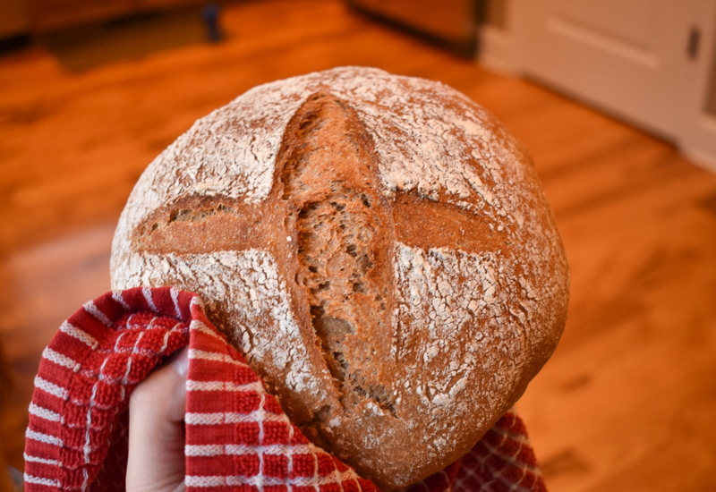 beginner whole wheat sourdough bread recipe and instructions
